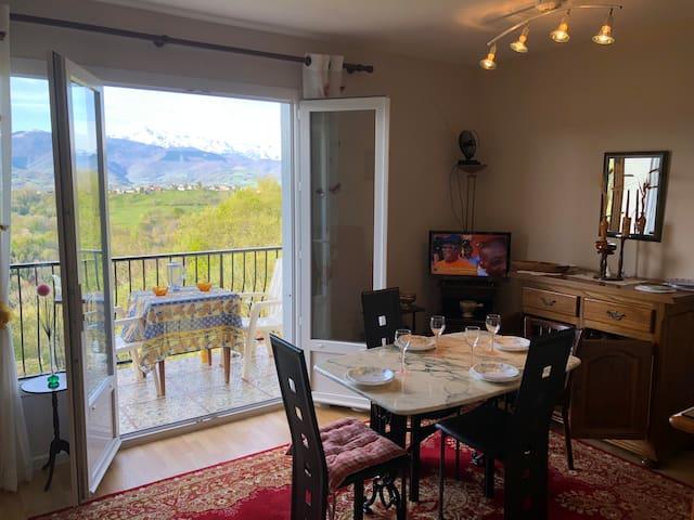 T2 n°12 vue magnifique sur les Pyrénées