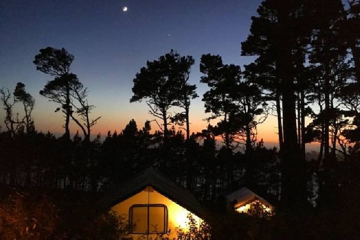 A4 · Large Family Glamping B