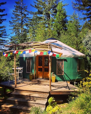 Mountain Top Yurt in the Redwoods