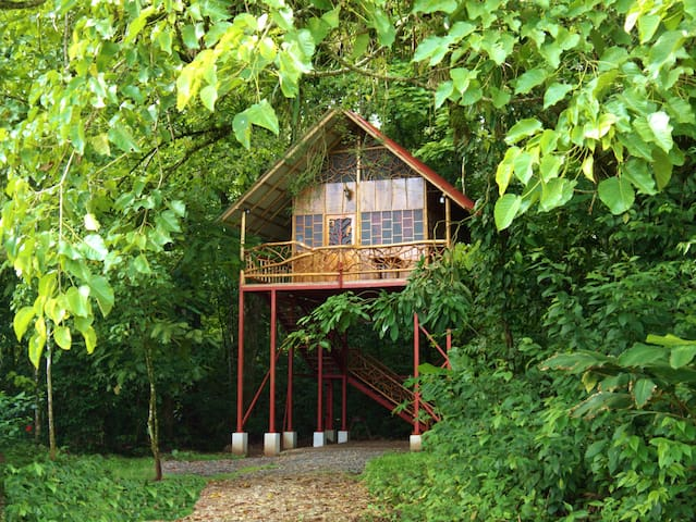 Magical Jungle Tree House with Hot Springs