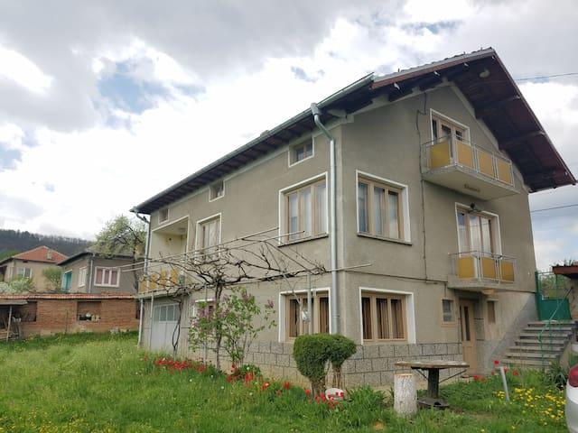 Bozhana's House