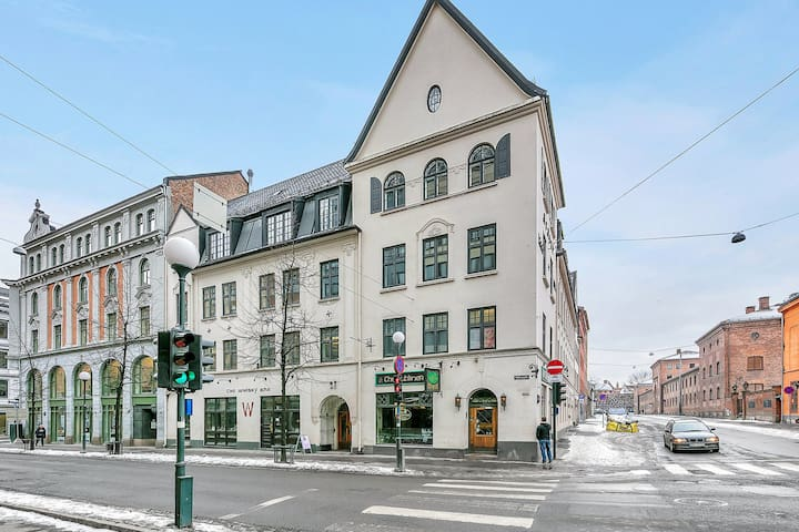 Brand new and super cental 3-bedroom apartment, perfect for share. Karl Johan, Royal Palace and Aker Brygge are right around the corner. Quick access to the aiport.