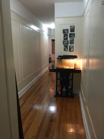 A Lovely One Bedroom Apartment!