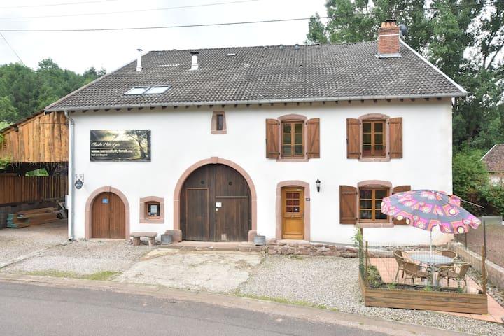 Saint-Dié-des-Vosges的民宿