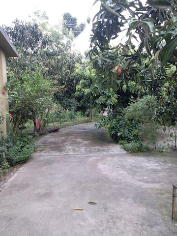 Chatmohar Upazila的民宿