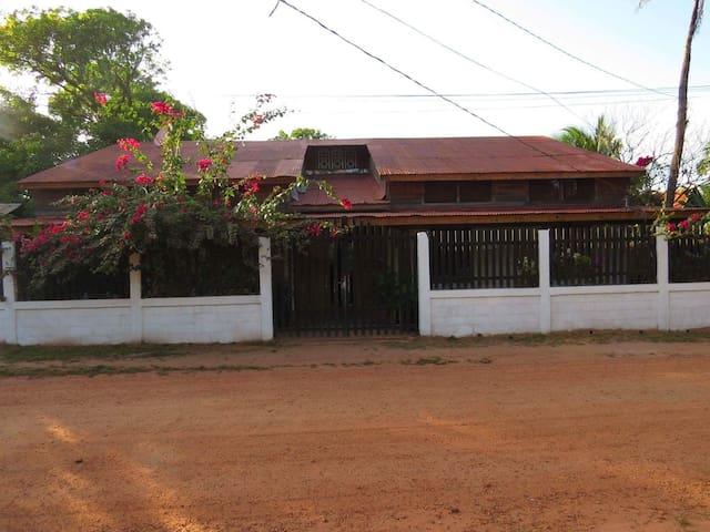 Pijul house