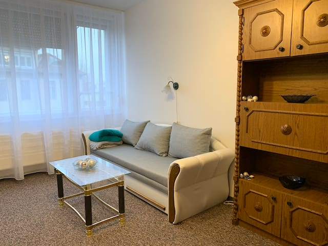 Aparment Close to Dóm Square by the River Tisza