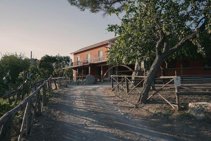 Montecorvino Pugliano的民宿