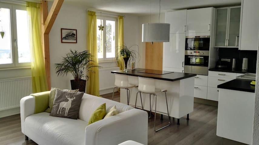 Ühlingen-Birkendorf的民宿