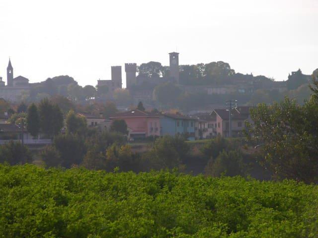 Volta Mantovana的民宿