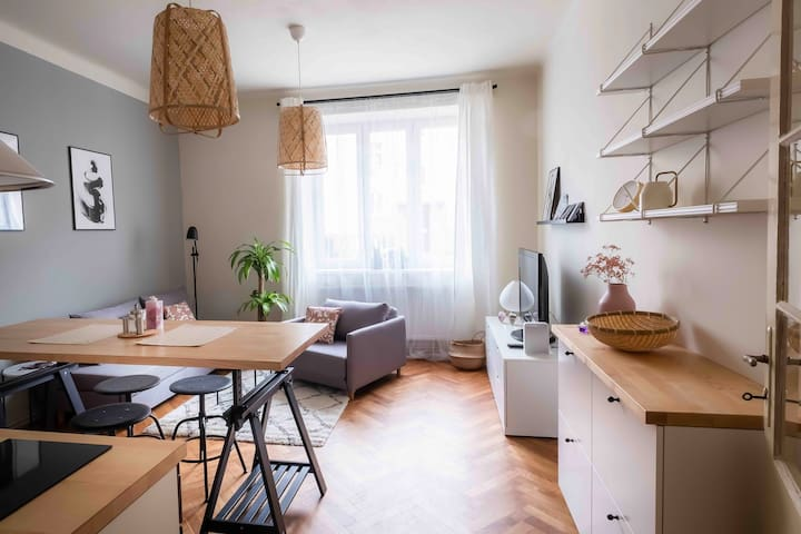 Cozy flat