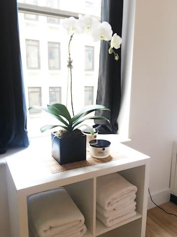 Stylish Studio for 4 on Wall Street- Fidi