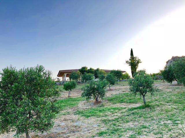 Santa Caterina dello Ionio的民宿