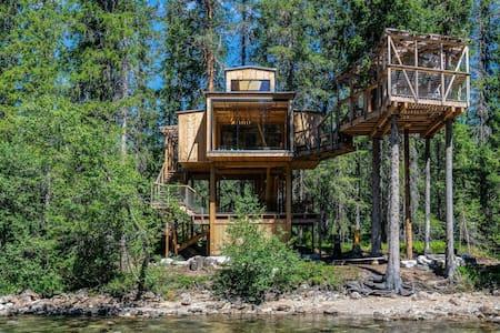 Å Auge - River Eye - Treehouse