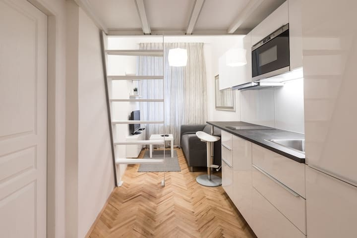 Newly renovated studio close to OLD TOWN #1