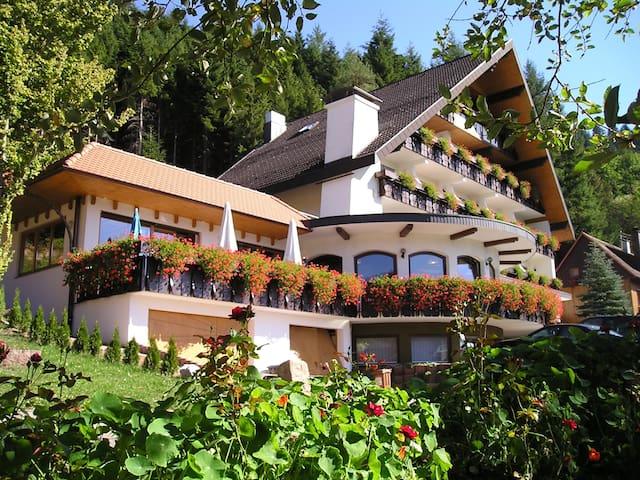 申肯策尔 (Schenkenzell)的民宿