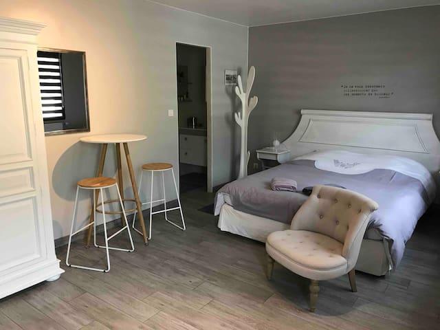 Chambre très  spacieuse tout confort