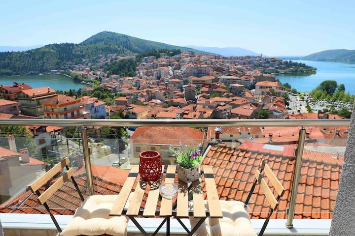 Kastoria的民宿