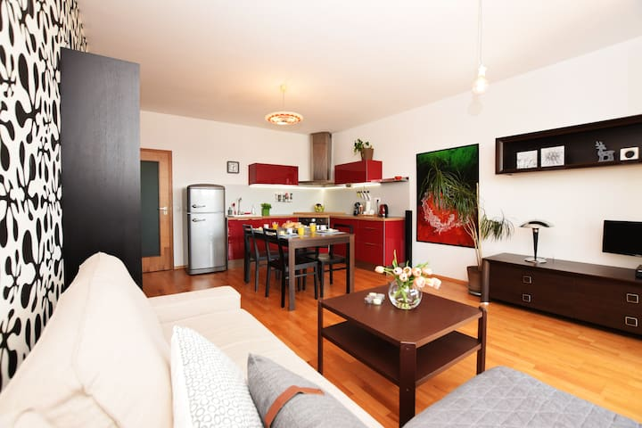 Sunny spacious HOME in centre, PARKING, city VIEW