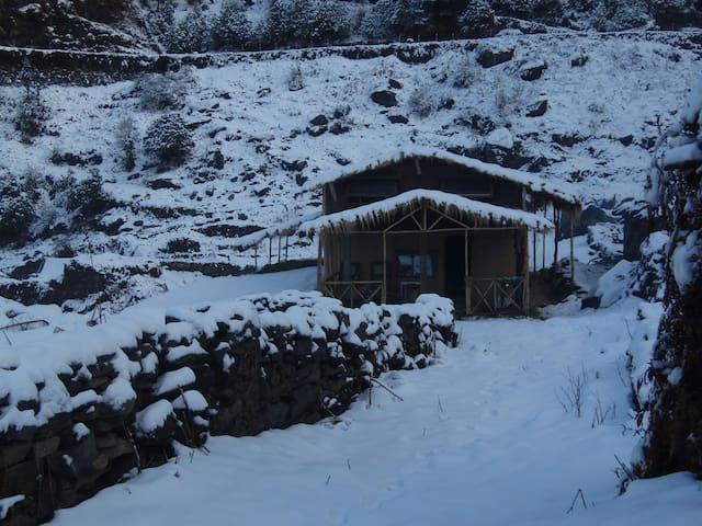 Uttarakhand的民宿