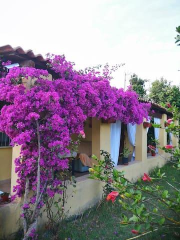 Sardegna的民宿