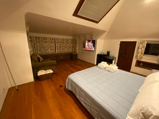 Spacious & Charming Master Suite with skylight.