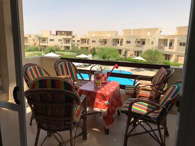 جنوب سيناء的民宿