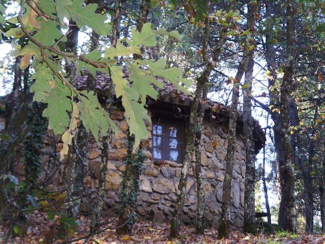 Arenas de San Pedro的民宿