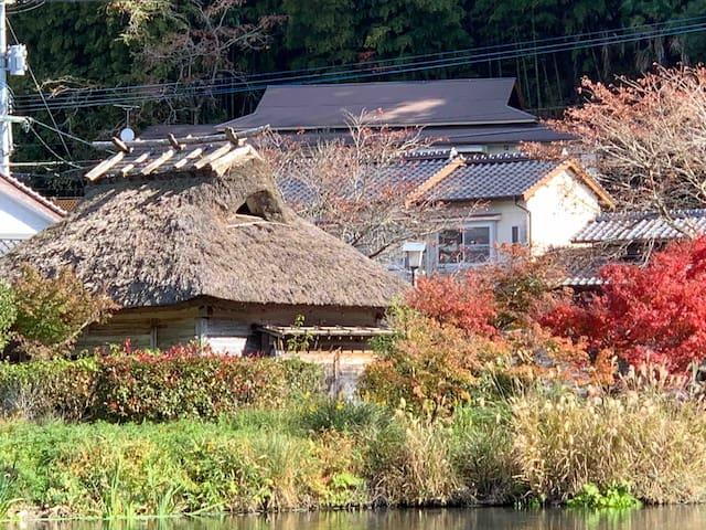 湯布院温泉旅行🌸 近くに温泉あり(徒歩2分)♨️「金鱗湖」が見渡せる✨由布岳前泊⛰ 大分旅クーポン👍