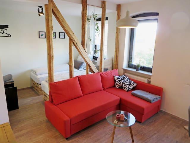 "Spacious & bright apartment ""Zur Galgenhöhe"""