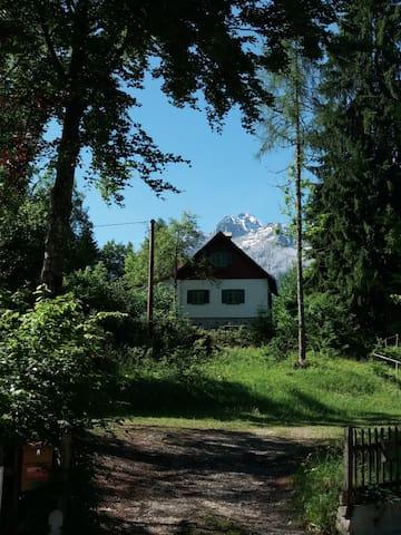 Valbruna的民宿
