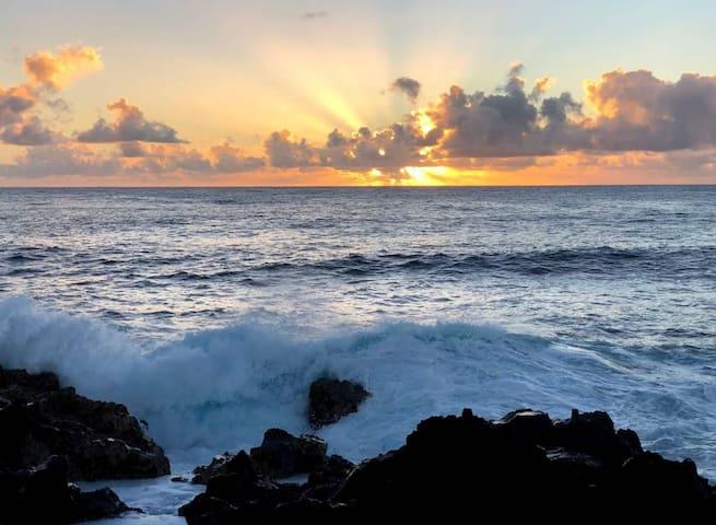 夏威夷天堂公园的体验