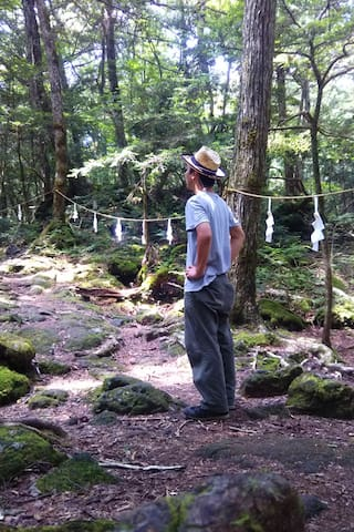 富士河口湖的体验