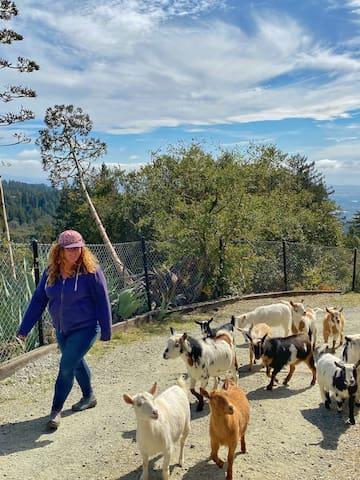 圣何塞瓜达卢佩奥扎卡蒂潘的体验