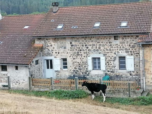 Le Malzieu-Ville的民宿