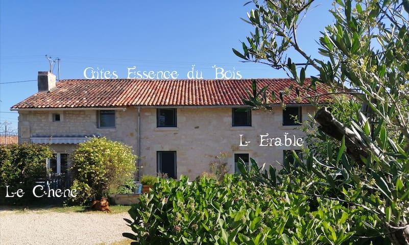 Vendeuvre-du-Poitou Saint Martin la Pallu的民宿