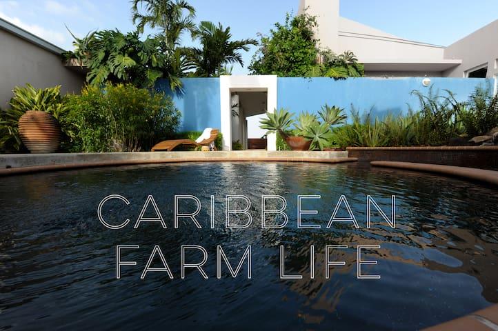 卡沃罗霍(Cabo Rojo)的民宿