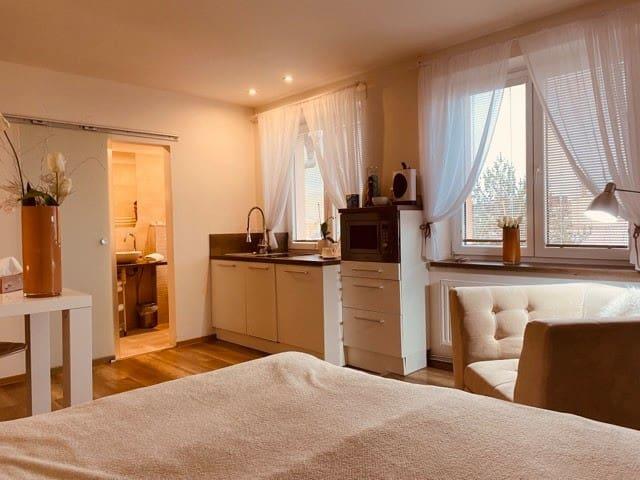Ostrava的民宿
