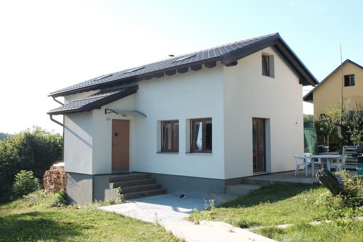 Jílové u Prahy的民宿