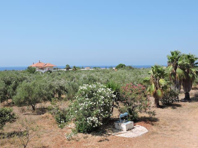 Agrilos的民宿
