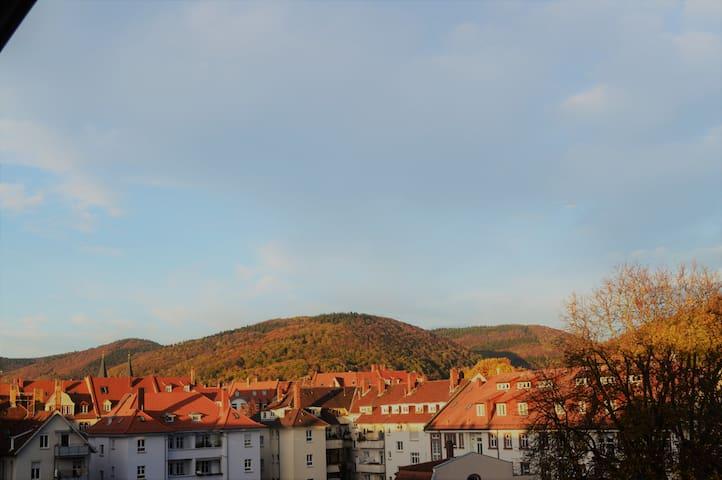 海德堡民宿
