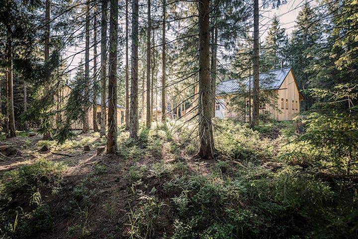 Ulrichsberg的民宿