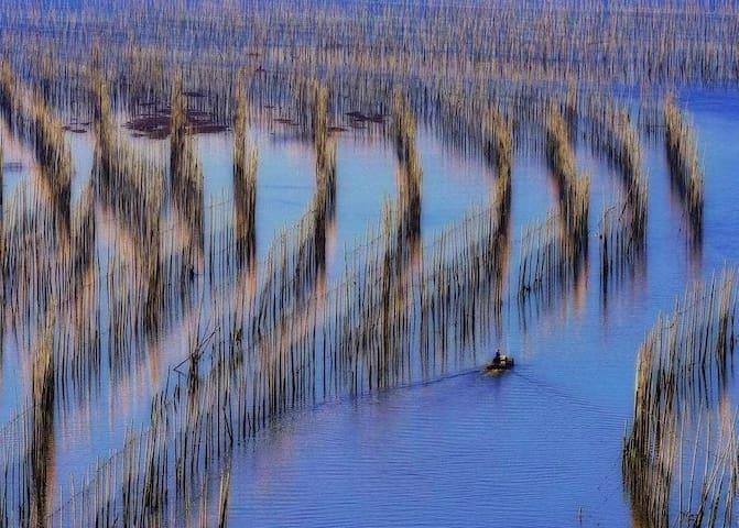 【亚洲最美滩涂-霞浦】近大京沙滩|简约田园双床房