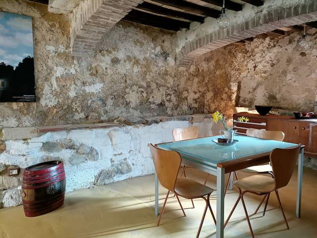 Civitella Paganico的民宿