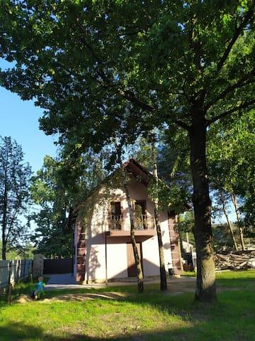 Svitiaz'的民宿