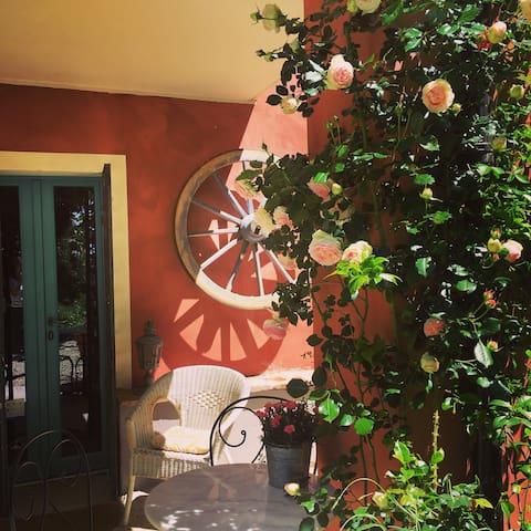 Vignale Monferrato - San Lorenzo的民宿