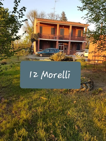 Dodici Morelli的民宿