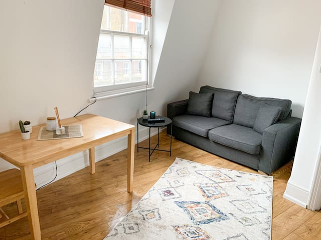 Cozy luxury entire flat in Central London