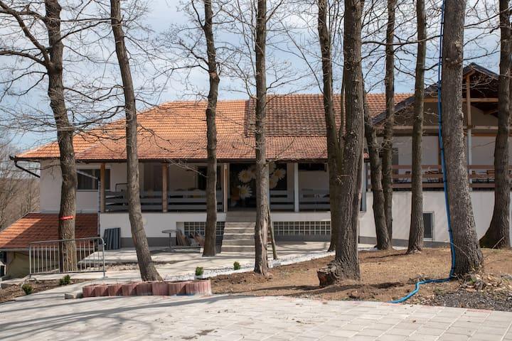 Boljevac的民宿