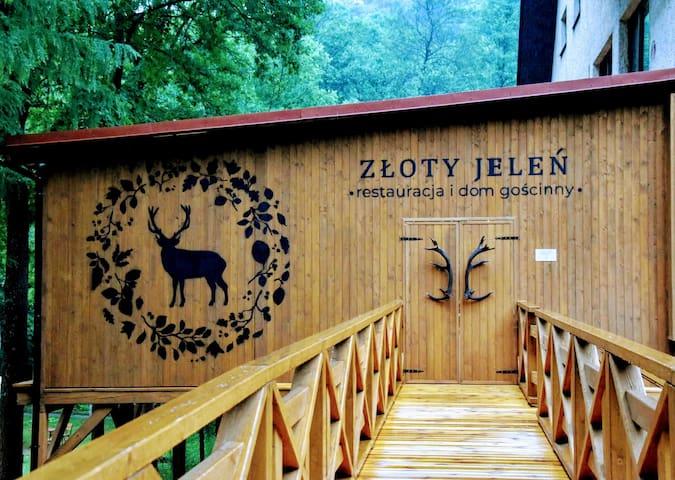 Złoty Potok的民宿